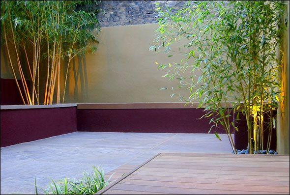 3 bamboo clumps increase in height to lead the eye across, while 3 concrete and wood benches provide plenty of seating. Lilac sandstone paving contrasts dramatically with the burgundy and sand coloured walls. N London. A low maintenance contemporary city garden design.