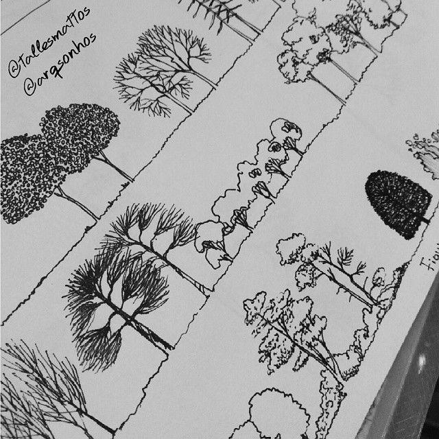 Aprendendo a desenhar outros tipos de representação em paisagismo.  Autor: @tallesmattos