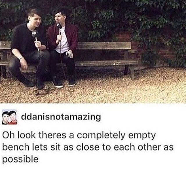 dan and phil in a nutshell