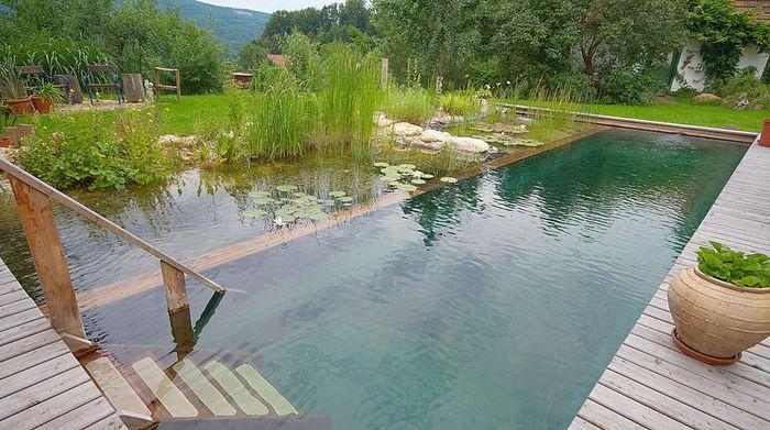 bio swimming pool