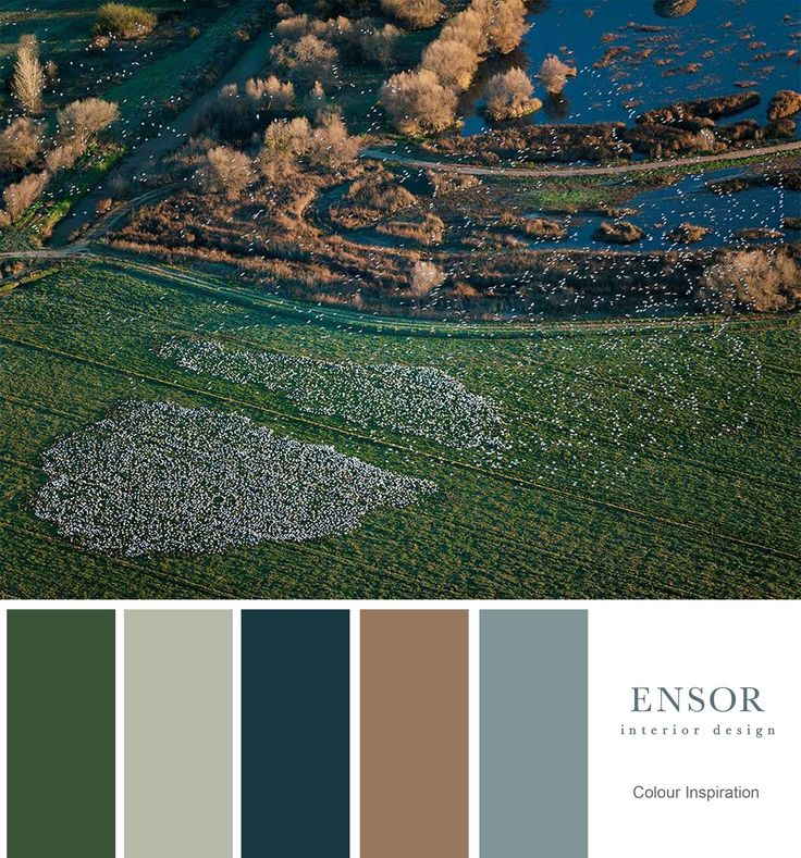 Resting birds #nature #colour #color #ensor #interiordesign www.ensorinteriordesign.co.uk
