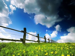 Nature Wallpapers: Spring Fields Wallpaper