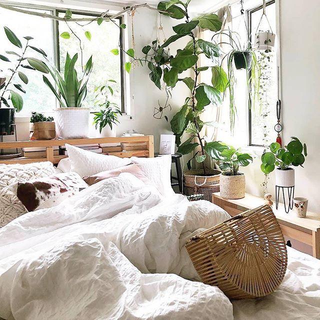 Bedroom Inspiration With Hanging Plants Indoor Plants White Bedding Basket Wooden Side Table Thro Minimalist Bedroom Design Bedroom Decor Bedroom Interior