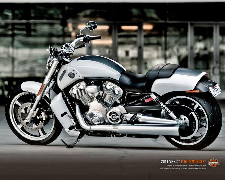 Harley Davidson VRod Muscle white denim