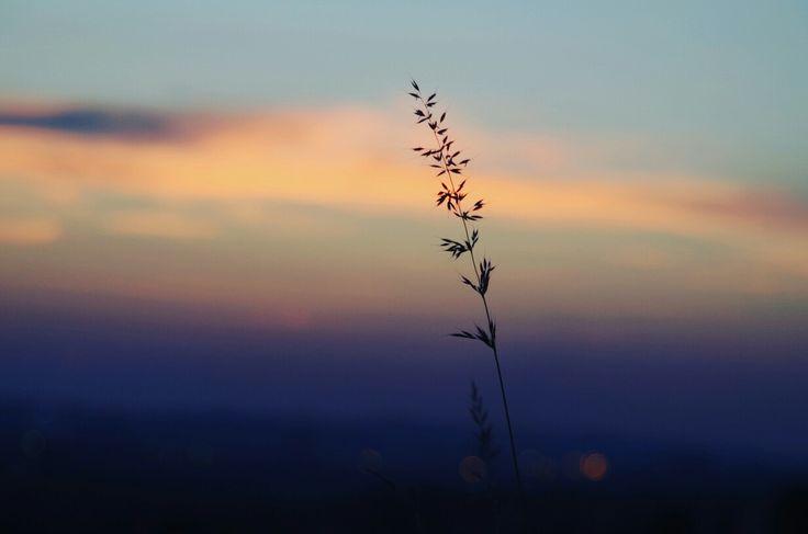 #sunset #colorfulsky  pentax k50
