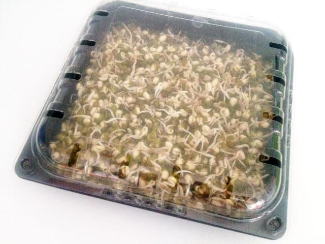 Germogliatore fai da te con una confezione di pomodorini riciclata. Risparmio: 20 Euro.