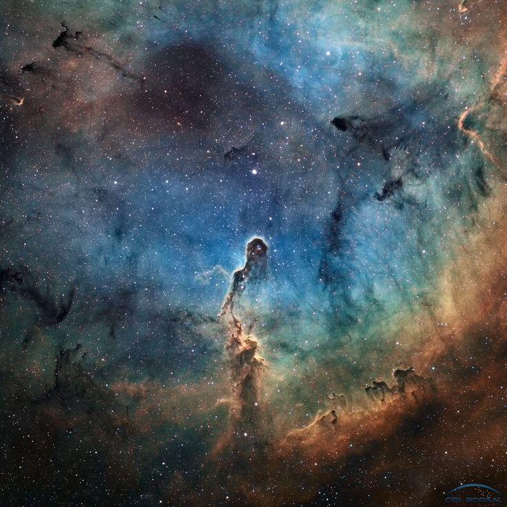 La Trompa del Elefante. 20 años luz de altura tiene esta enorme masa de gas y polvo de la que nacen estrellas...