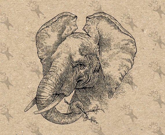 Antique image Elephant Instant Download Digital printable ...