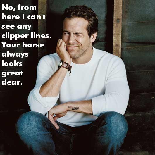 Equestrian Ryan Reynolds
