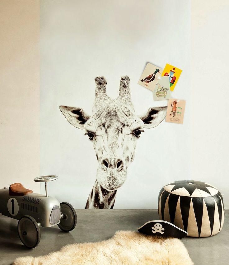 Carta da parati magnetica, con animali | The Li'l MarketThe Li'l Market