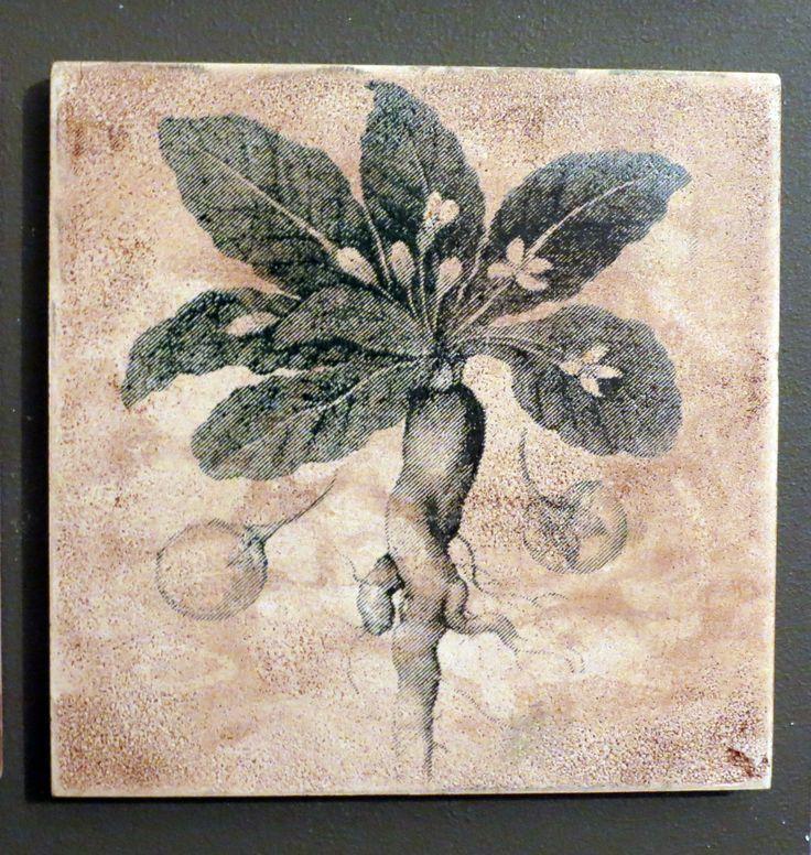 Mandrágora, serigrafía cerámica. Cristina del Castillo