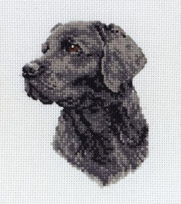 6PCE218 Broderipakning - Labrador  Str. 11 x 8 cm.  Sys på hvid Aida med 7,2 tr. pr. cm.   Pakningen indeholder billede, stof, mønster og Anchor garn samt en nål.  Klik på billedet for at se det i større format.