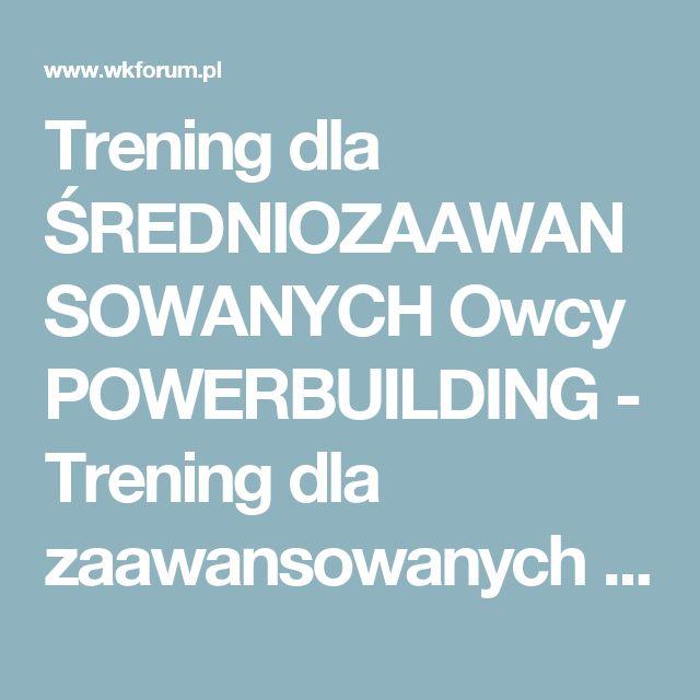 Trening dla ŚREDNIOZAAWANSOWANYCH Owcy POWERBUILDING - Trening dla zaawansowanych - Warszawski Koks - Forum