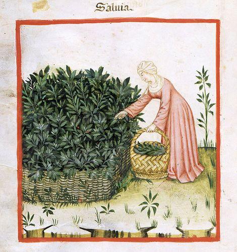 Montiel siglo XIV (Moda Mujeres Cristianas)
