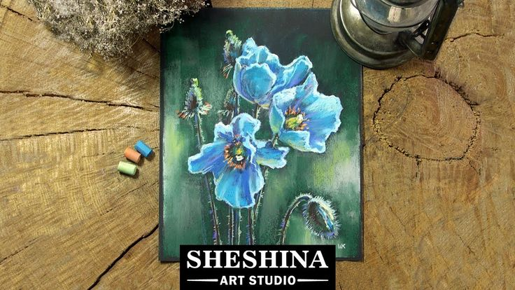 How to draw blue poppies with soft pastels 🎨 Sheshina Ekaterina