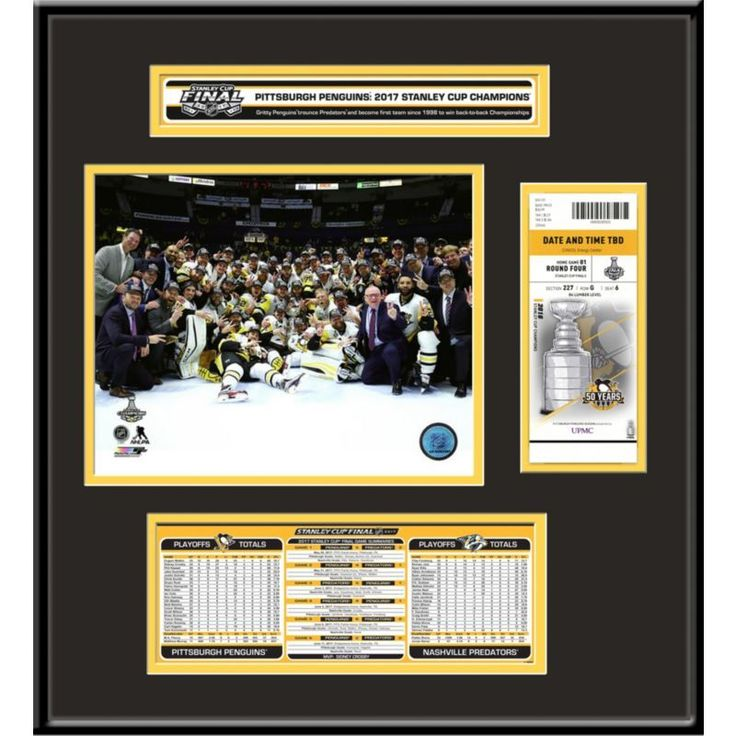2017 Stanley Cup Champions Pittsburgh Penguins Ticket Frame Jr., Team