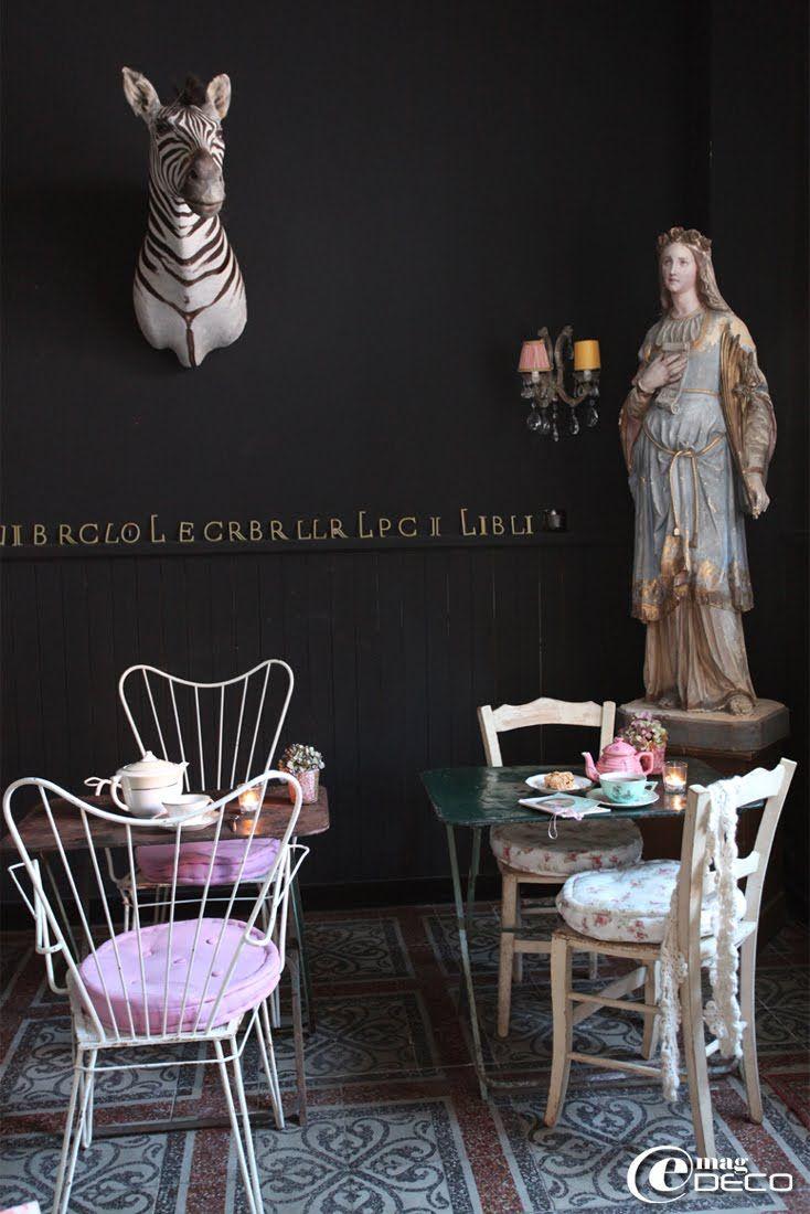 Ad Libitum, boutique cabinet de curiosités Privas