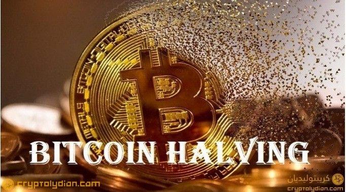 #CryptoCapsule #Bitcoin #BitcoinHalving #Ripple #SatoshiNakamoto What Is Bitcoin Halving?
