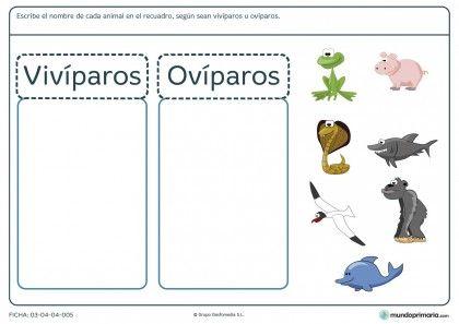 Ficha de distinguir los animales para niños de 6 años