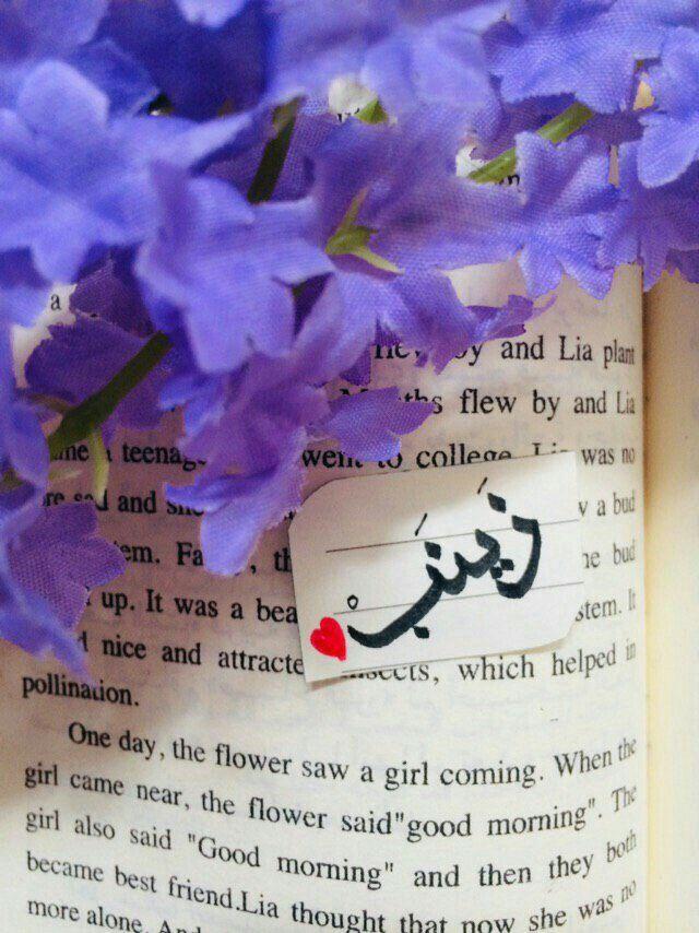 Pin By المبتسم دائما بيشو On Zainab My Life Name Wallpaper Good Morning Beautiful Flowers Love Wallpaper Backgrounds