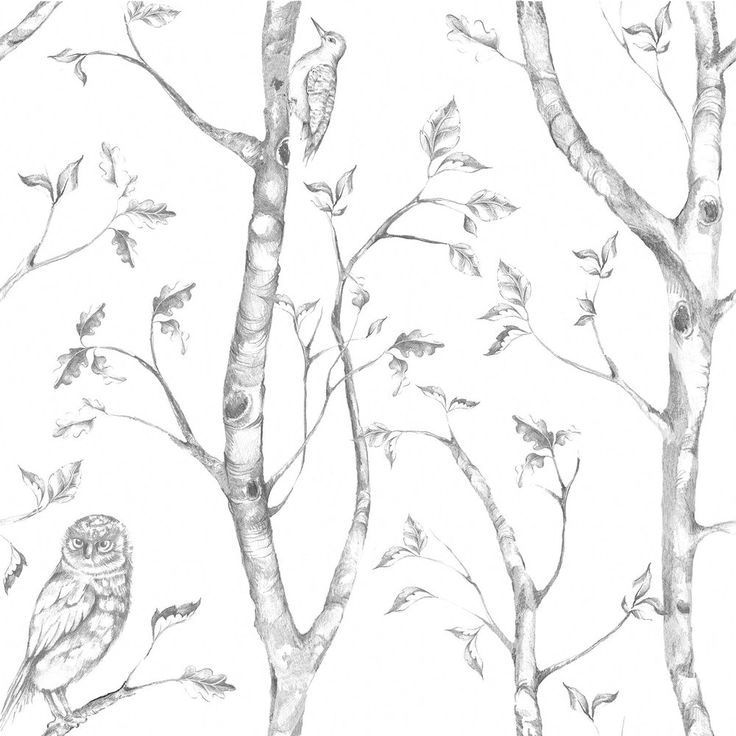 FREE SHIPPING This gray tree mural is elegant with its dainty birch trees, snowy owls and birds. The delicate forest is neutral, creating a calm and peaceful feeling. This wallpaper is: * a peel and stick application. Pull up to remove. * removable. It's safe for walls and leaves no icky residue. Yay! * easy to peel off and reposition. Fix mistakes in a snap. So easy! Product Details SKU: BRNUW1412 | Material: Premium Peel & Stick Substrate | Design Repeat: 20...