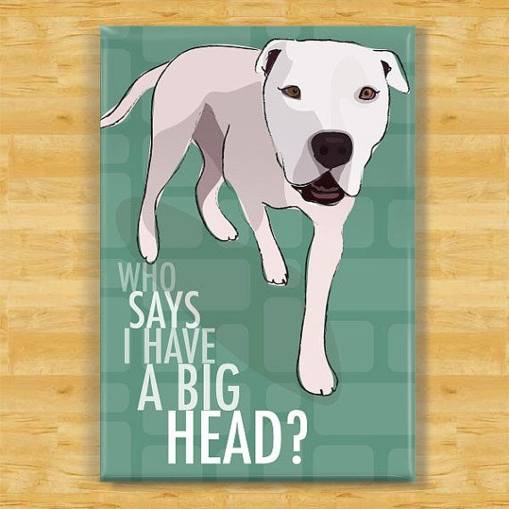 American Bulldog Magnet - Who Says I Have a Big Head on Etsy, $5.99