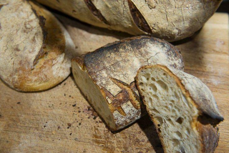 Surdeigsbrød smaker bedre og holder deg mett lenger enn vanlig brød. Lær hvordan du baker med surdeig - og få oppskriften på Oslos beste surdeigsbrød!