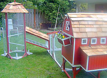 206 best images about chicken coop on pinterest chicken for Fancy chicken coops for sale