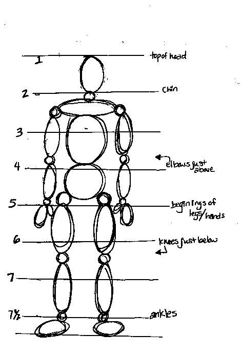 Scribble Drawing Definition : Best images about proportions on pinterest body