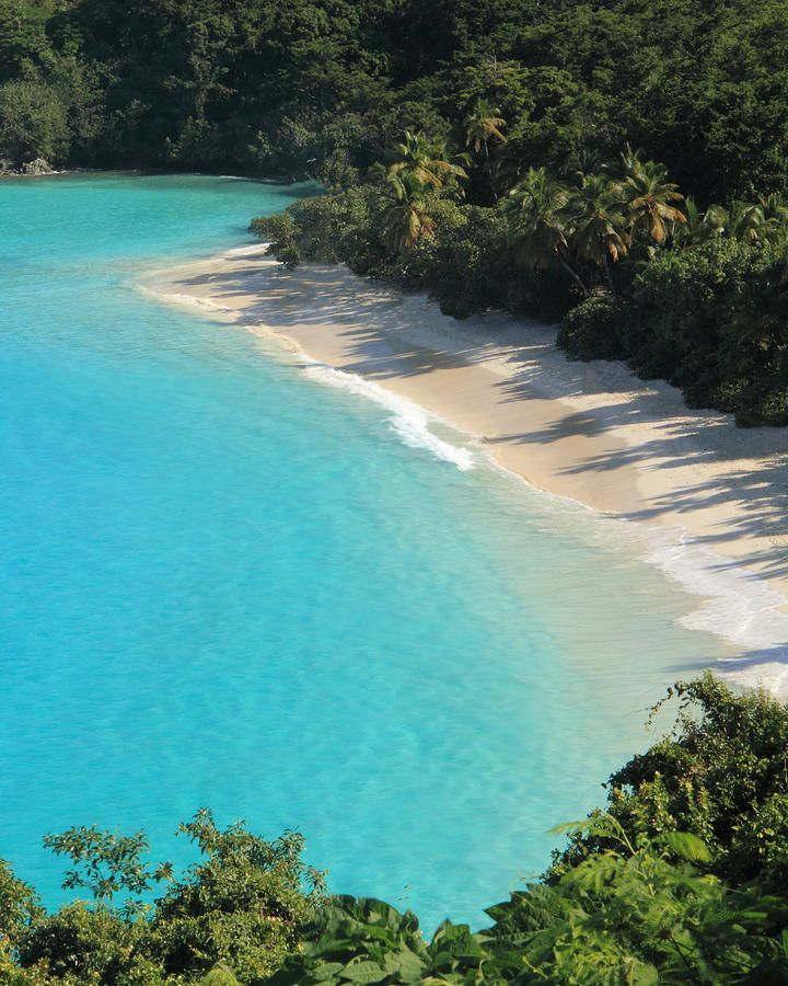✯ Trunk Bay - St. John, US Virgin Islands    i've been there and this picture doesn't even do it justice... so beautiful!