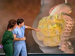 Jual pembakar lemak di perut - paha -  lengan - pipi - betis dan bagian tubuh tertentu dapat di idealkan sesuai keinginan anda tanpa efek samping.  http://obatpelangsingmurah.net/jual-pembakar-lemak/
