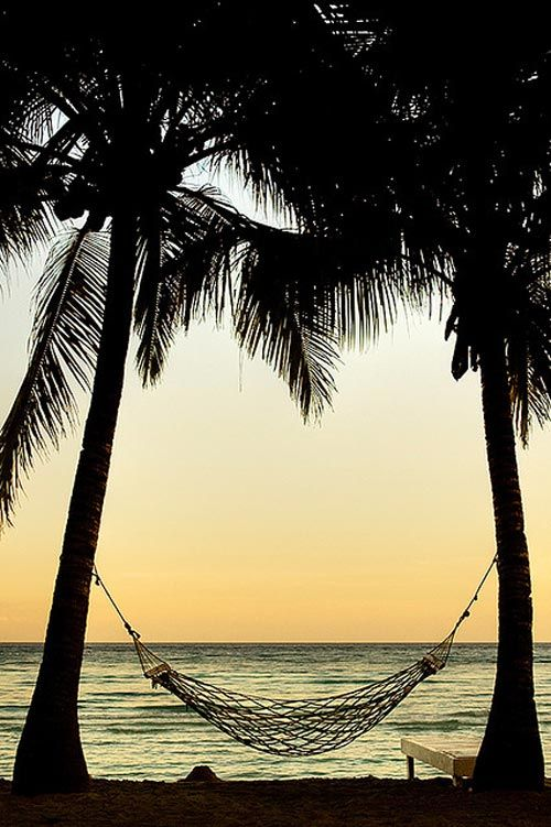 .: Dreams Places, Sunsets, Hammocks, The Ocean, Frank Ocean, Vacations Spots, Palms Trees, Beaches Club, The Sea