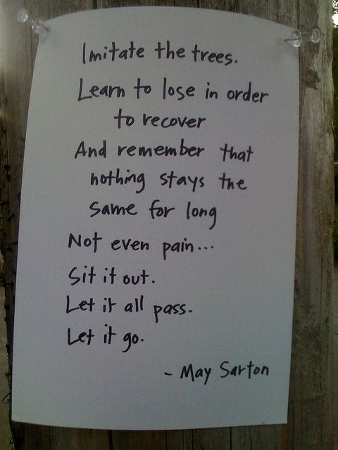May Sarton, one of my favorite poets