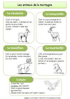 Chez Sanleane: Les animaux de la montagne