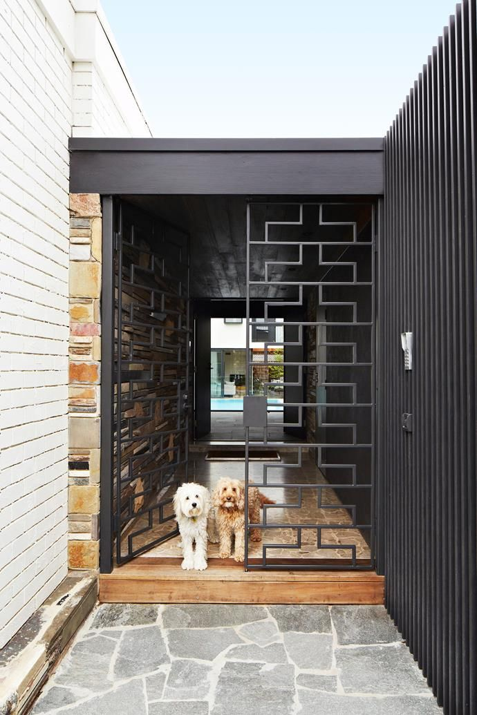 The mistresses of the house. The ornate steel door was custom-designed by architect Jade. Stephen and Tanya's Melbourne 1960s home #renovation #Aushomes