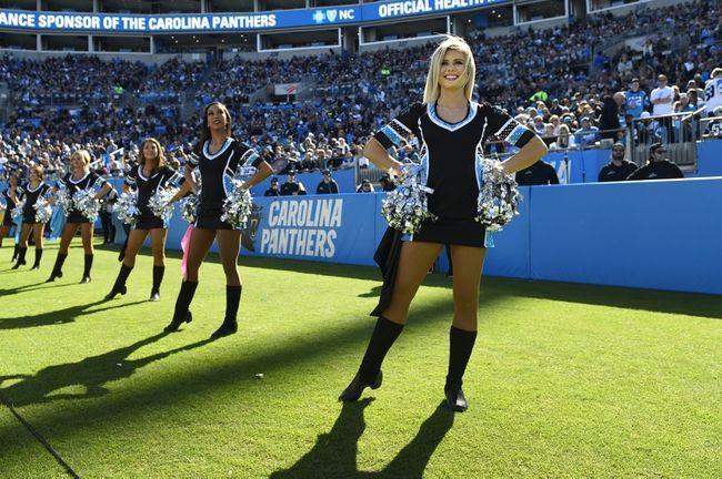 Atlanta Falcons At Carolina Panthers 11 17 19 Nfl Pick Odds And Prediction Carolina Panthers Atlanta Falcons Panthers