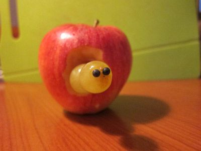The caterpillar and his apple :-))