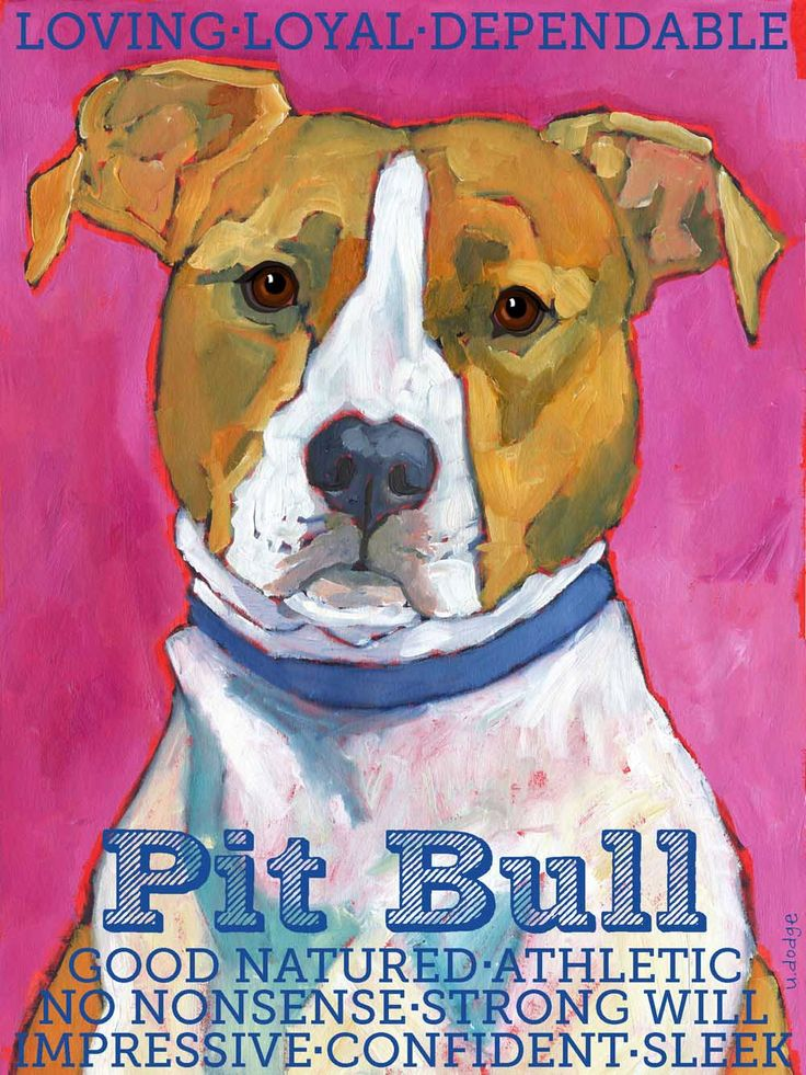 Pitbull Wall Art 50 best pitty art images on pinterest | pit bull art, animals and