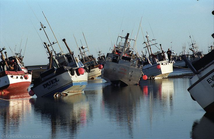 758 best images about fishing fleet navires de p che on for Bristol bay fishing