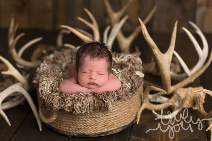 Antlers rustic country newborn photography