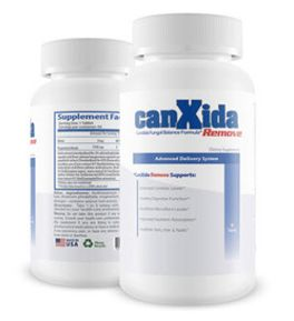 Learn How To Treat And Get Rid Of Candida Yeast Infections. More than you will ever want to know about Candida.