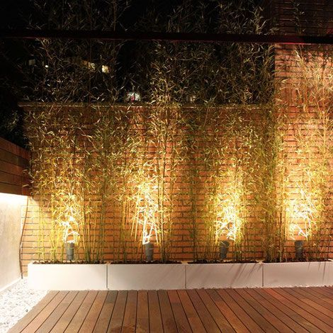 Sai arquitectura remodelaciones bogota colombia exteriores for Iluminacion exterior jardin