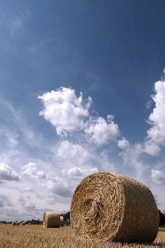 Outdoor Photography: 27 Hay Bales Just for Fun