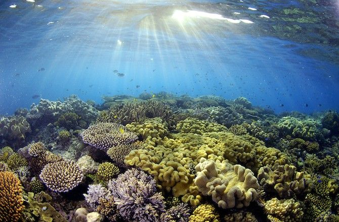 Oceans Valued at $24 Trillion: Here's the Breakdown