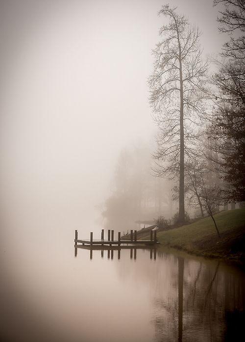 This Ivy House - vintagehomeca: Foggy Morning. (by dbndixie)Ŧ~༺ɀ༻~Π