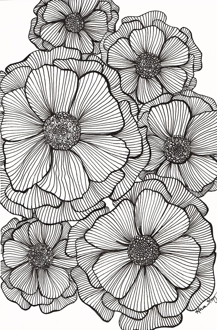 Zen doodle colour - Blackline Flowers