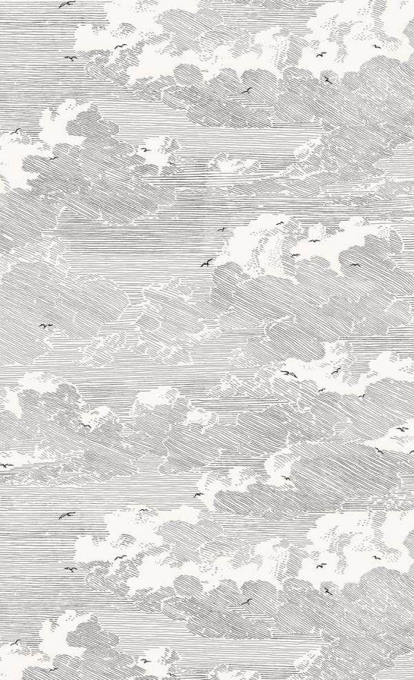 60 panoramiques chics et papiers peints en noir & blanc en
