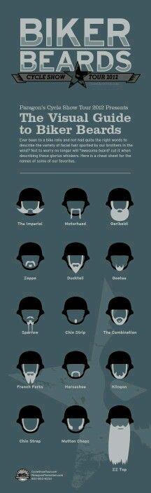 Diferentes tipos de ardillas pegadas en la cara