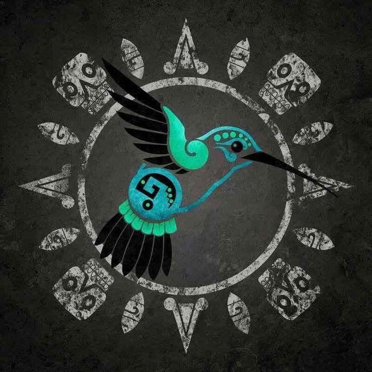 Colibri Azteca