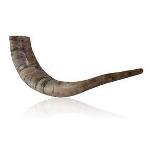shofar sounds rosh hashanah mp3